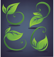 Bright and green leaves vector