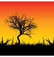 Sunset tree vector