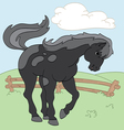 Black beauty vector