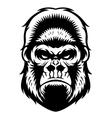 Gorilla head bw vector