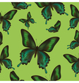 Seamless pattern with green butterfly vector