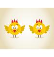 Chicks vector