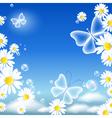 Butterflies and daisy vector