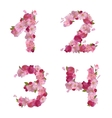 Spring font from cherry flowers figures 1234 vector