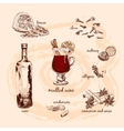Mulled wine and its components vector