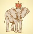 Elephant crown vector