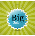 Blue retro big sale tag - label on green vector