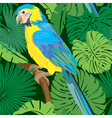 Seamless pattern with blue yellow macaw parrot vector