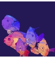 Colorful greeting card with fish vector