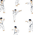 Men engaged in karate vector