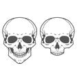 Different skulls on white background vector