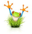 Little frog in grass vector