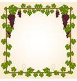 Grape square frame vector