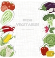 Background with vegetables vector