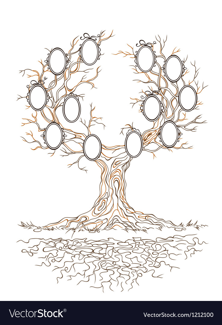 Graphic genealogical branchy tree vector | Price: 1 Credit (USD $1)
