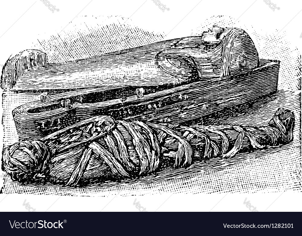 Egyptian mummy vintage engraving vector | Price: 1 Credit (USD $1)