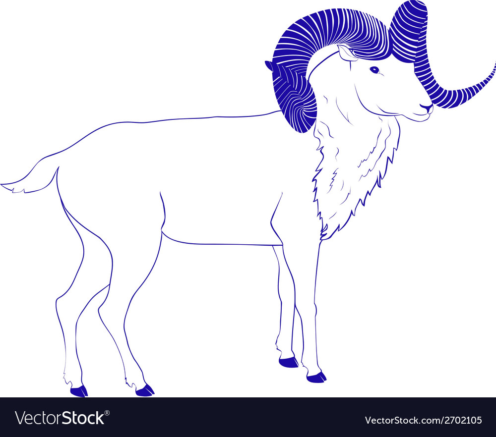 Goat or ram with long horn vector | Price: 1 Credit (USD $1)