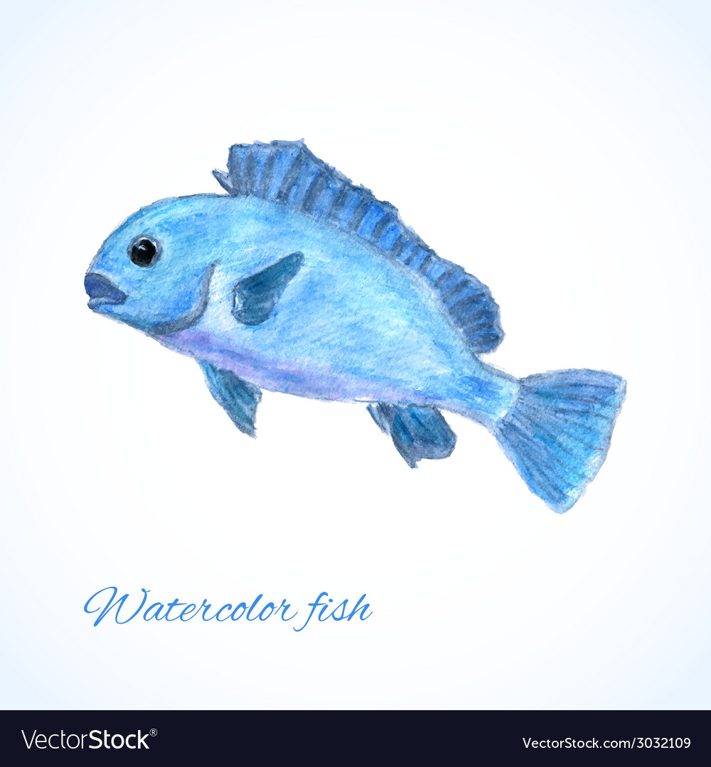 Watercolor fish vector | Price: 1 Credit (USD $1)
