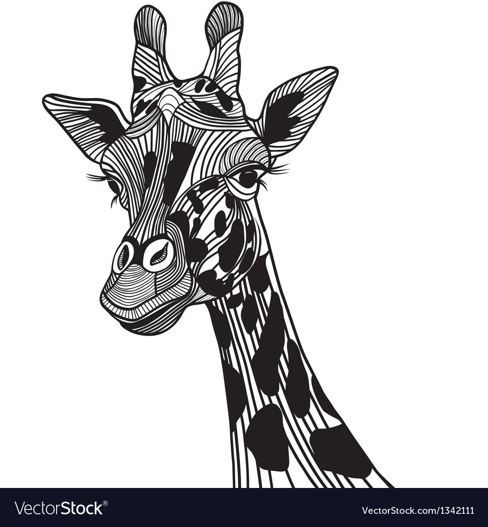 Giraffe head vector | Price: 1 Credit (USD $1)