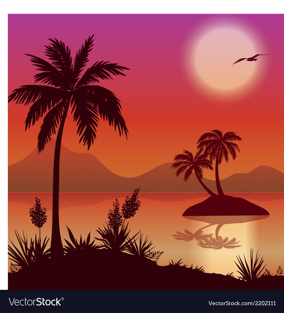 Tropical islands palms flowers and birds vector | Price: 1 Credit (USD $1)