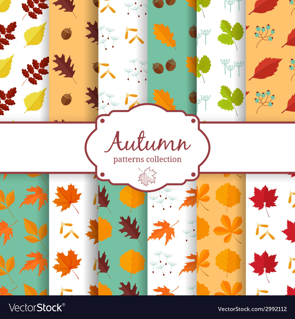 Autumn seamles backgrounds set vector | Price: 1 Credit (USD $1)