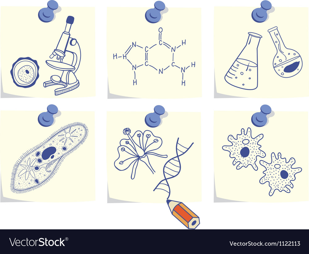 Biology on yellow memo sticks vector | Price: 1 Credit (USD $1)