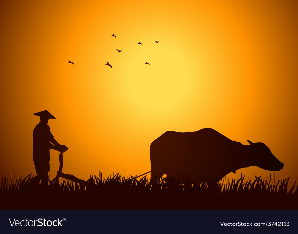 Traditional farmer vector | Price: 1 Credit (USD $1)