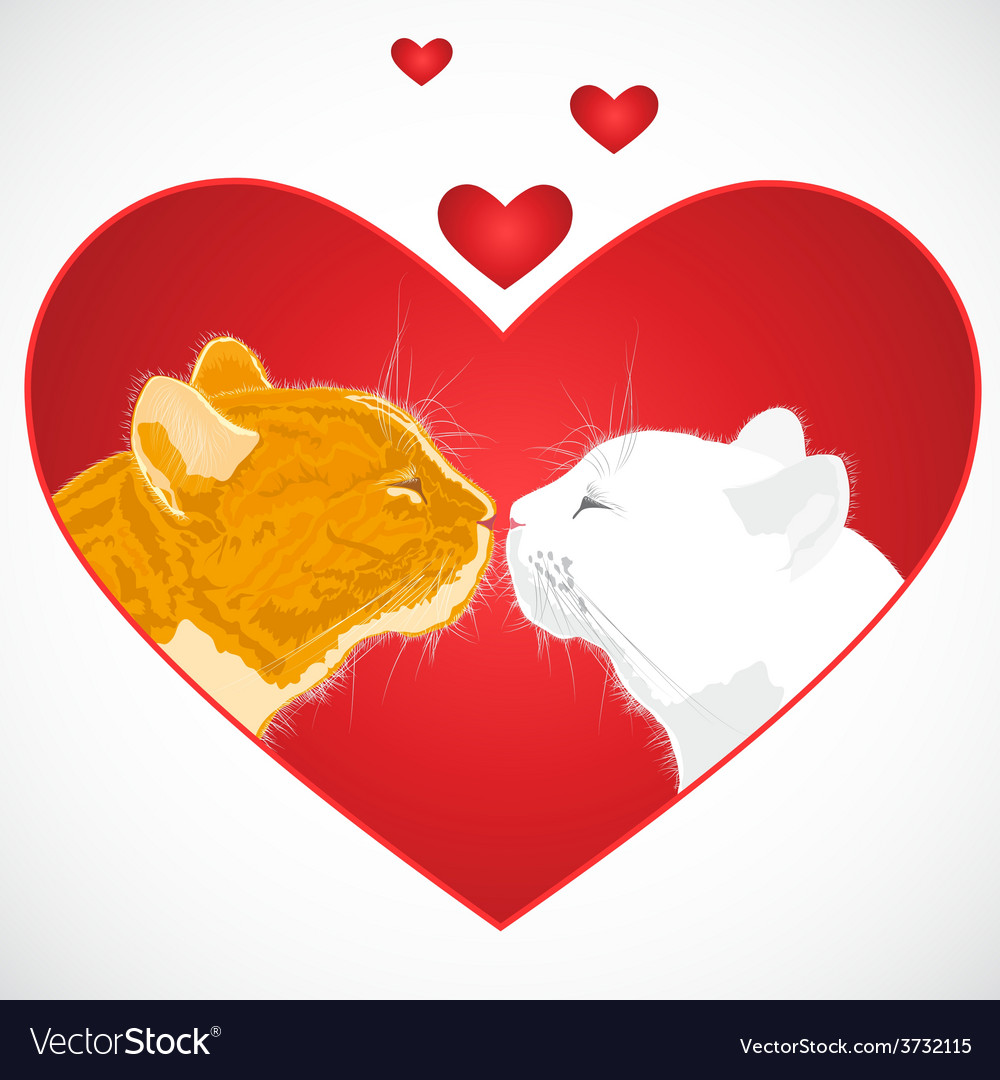 Two beloved cats on the heart shape background vector | Price: 1 Credit (USD $1)
