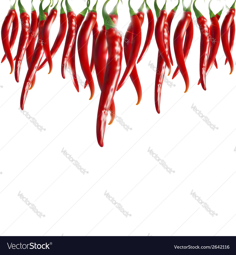 Hot pepper vector | Price: 1 Credit (USD $1)