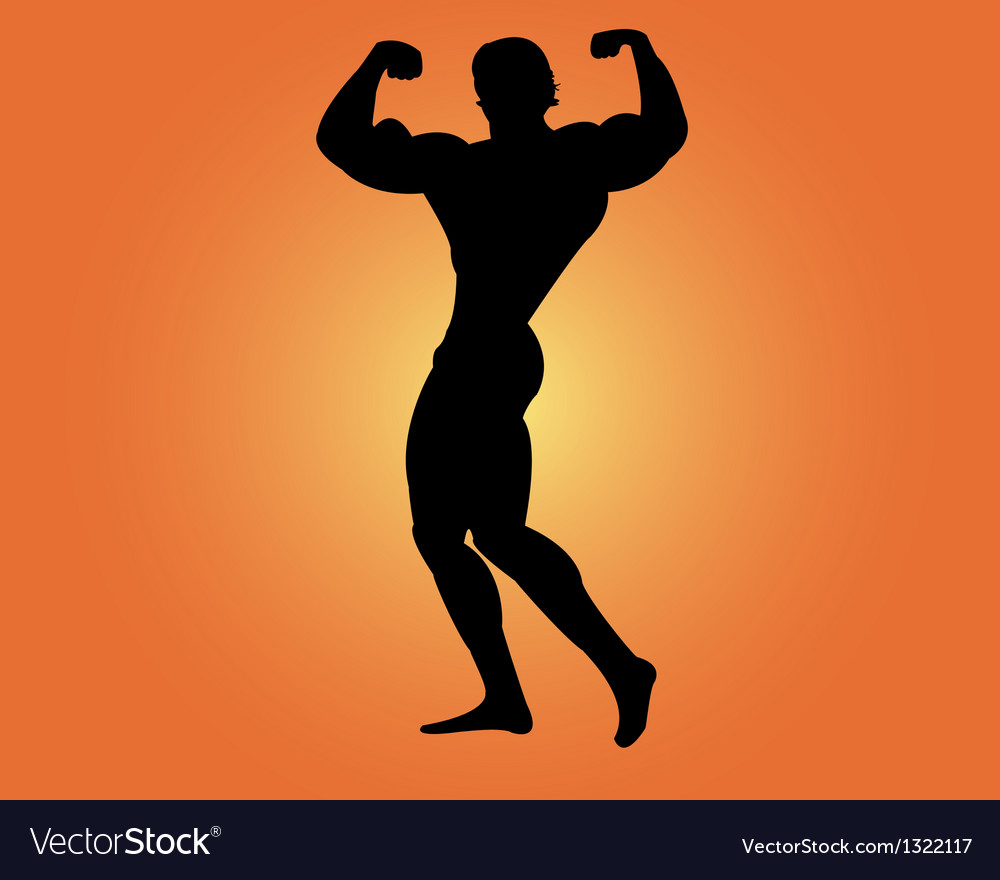 Bodybuilder vector | Price: 1 Credit (USD $1)