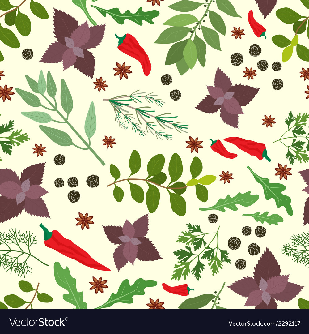 Fresh herbs and spices seamless pattern vector | Price: 1 Credit (USD $1)