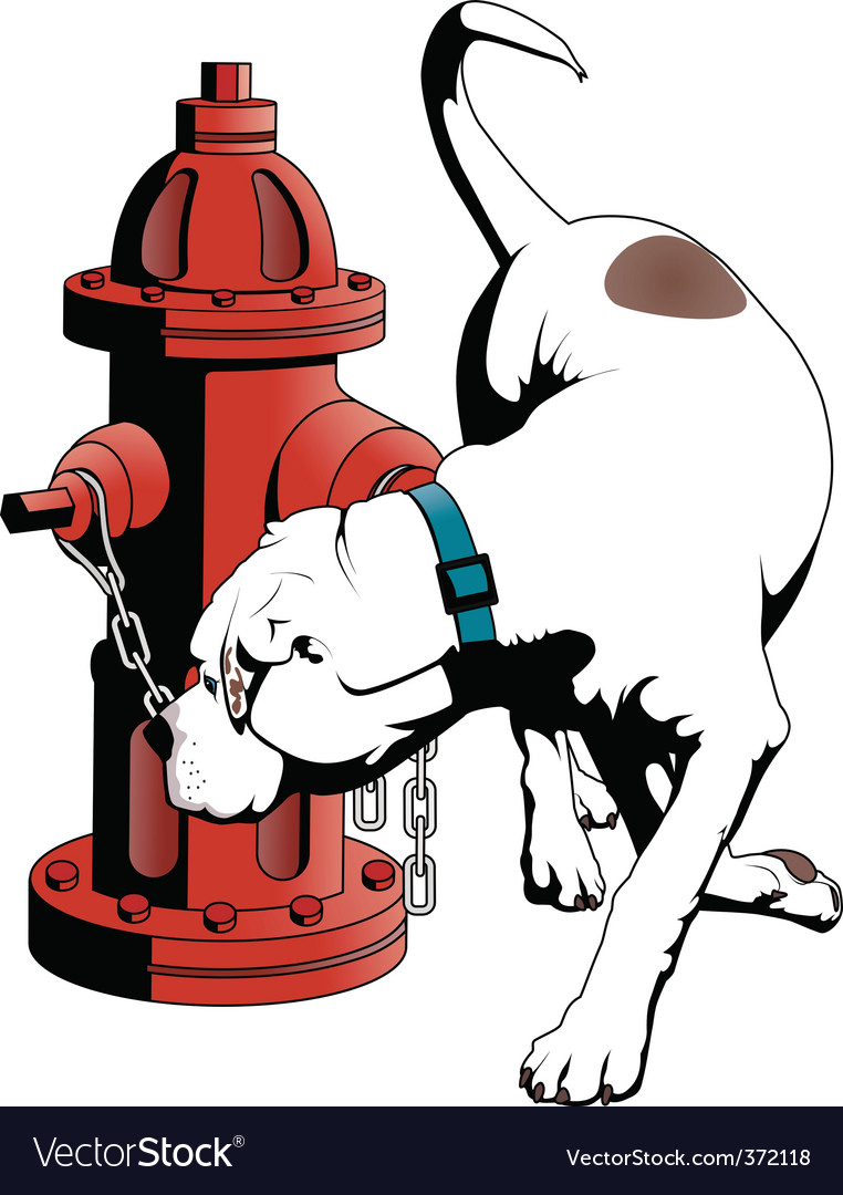 American bulldog vector | Price: 3 Credit (USD $3)
