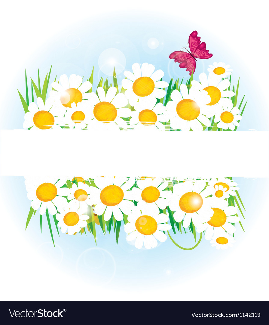 Daisy band with space for copy vector | Price: 1 Credit (USD $1)