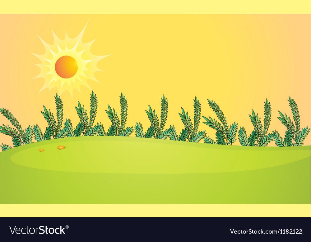 Sunny fields vector | Price: 1 Credit (USD $1)