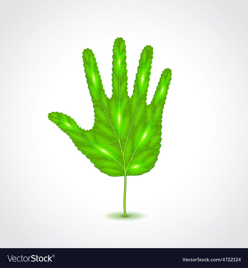 Leaf like human hand palm vector | Price: 1 Credit (USD $1)