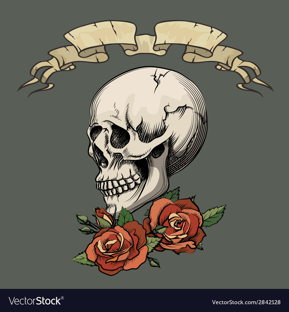 Human skull with roses vector | Price: 1 Credit (USD $1)