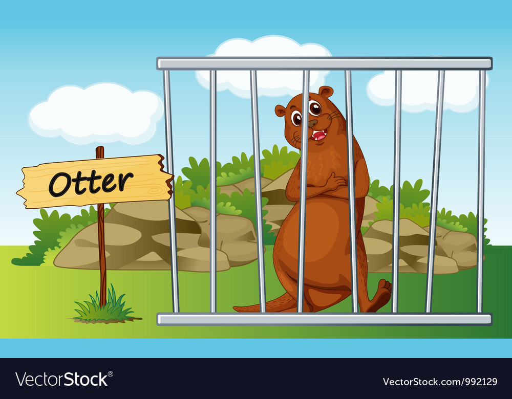 Cartoon zoo otter vector | Price: 1 Credit (USD $1)