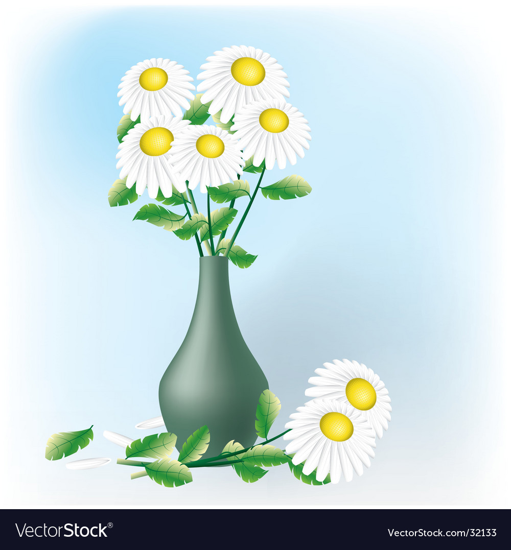 Chamomiles bouquet vector | Price: 1 Credit (USD $1)