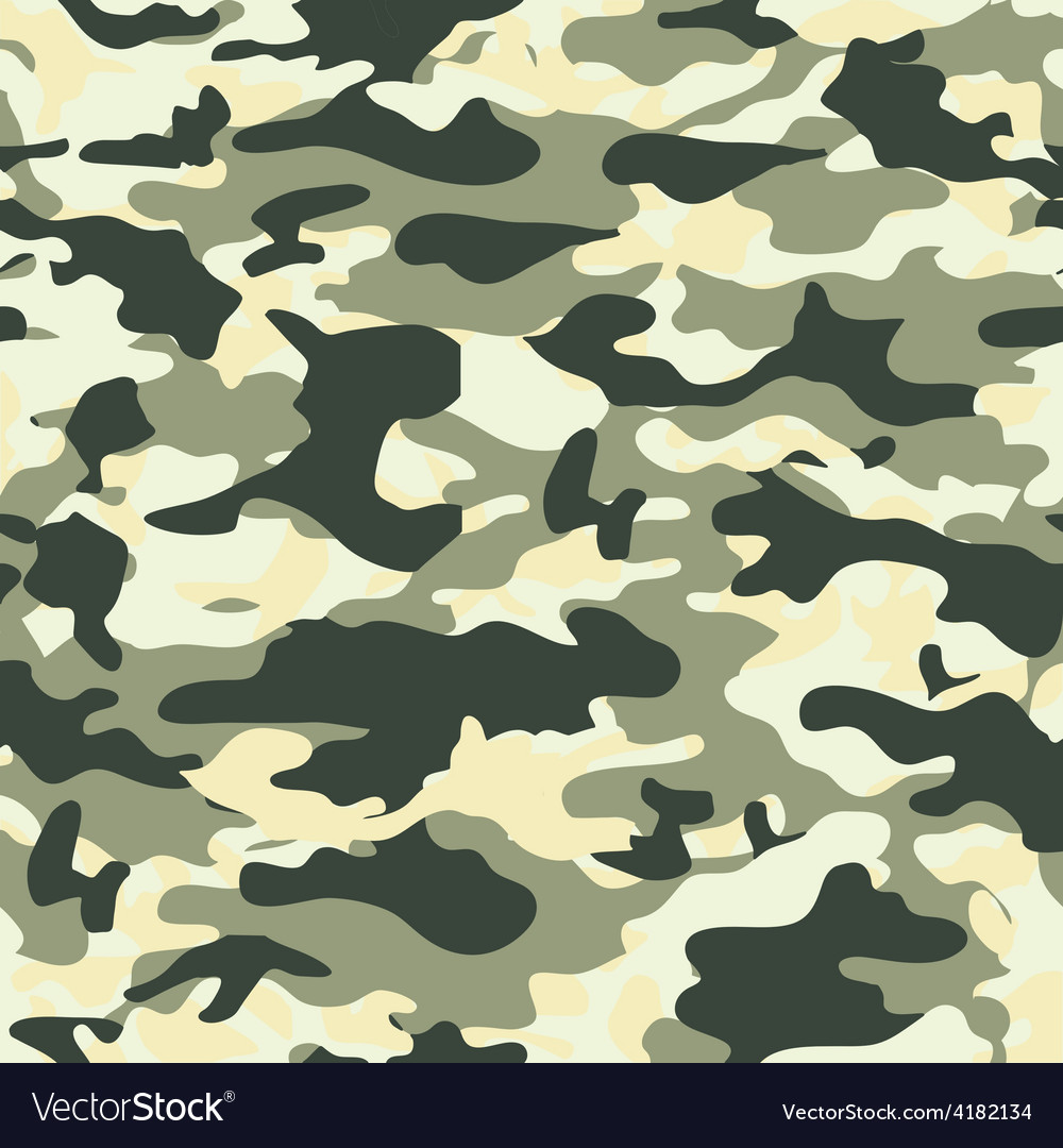 Camouflage texture 02 vector   Price: 1 Credit (USD $1)
