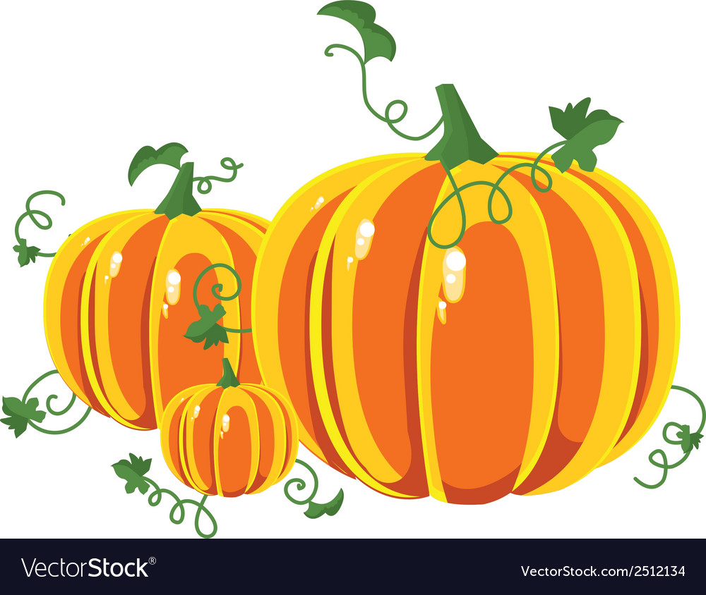 Pumpkin with leaves on a white background vector | Price: 1 Credit (USD $1)
