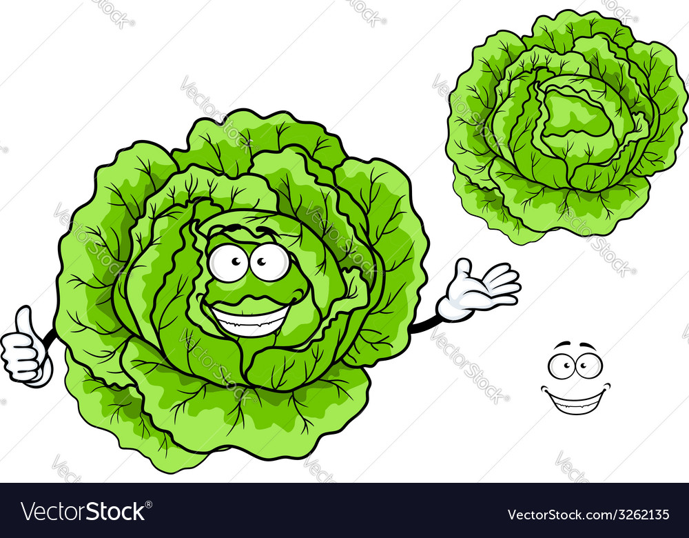 Happy green cartoon cabbage vegetable vector | Price: 1 Credit (USD $1)