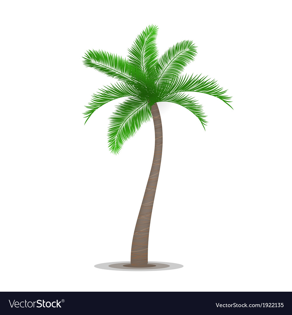 Tropical palm tree symbol vector | Price: 1 Credit (USD $1)