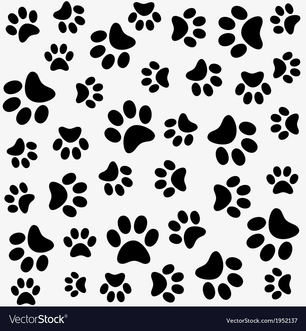 Animal pattern of paw footprint vector | Price: 1 Credit (USD $1)