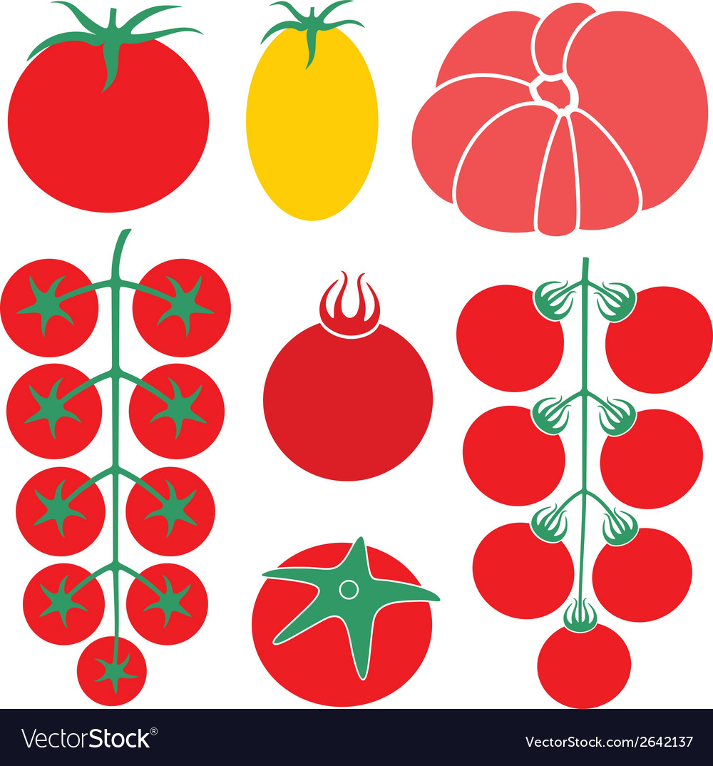 Tomato cherry vector | Price: 1 Credit (USD $1)