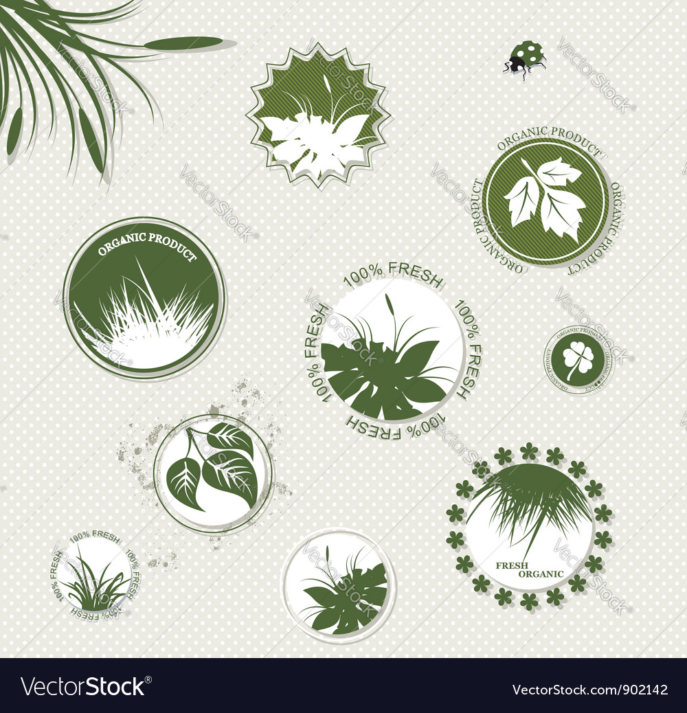 Set of botany badges vector | Price: 1 Credit (USD $1)