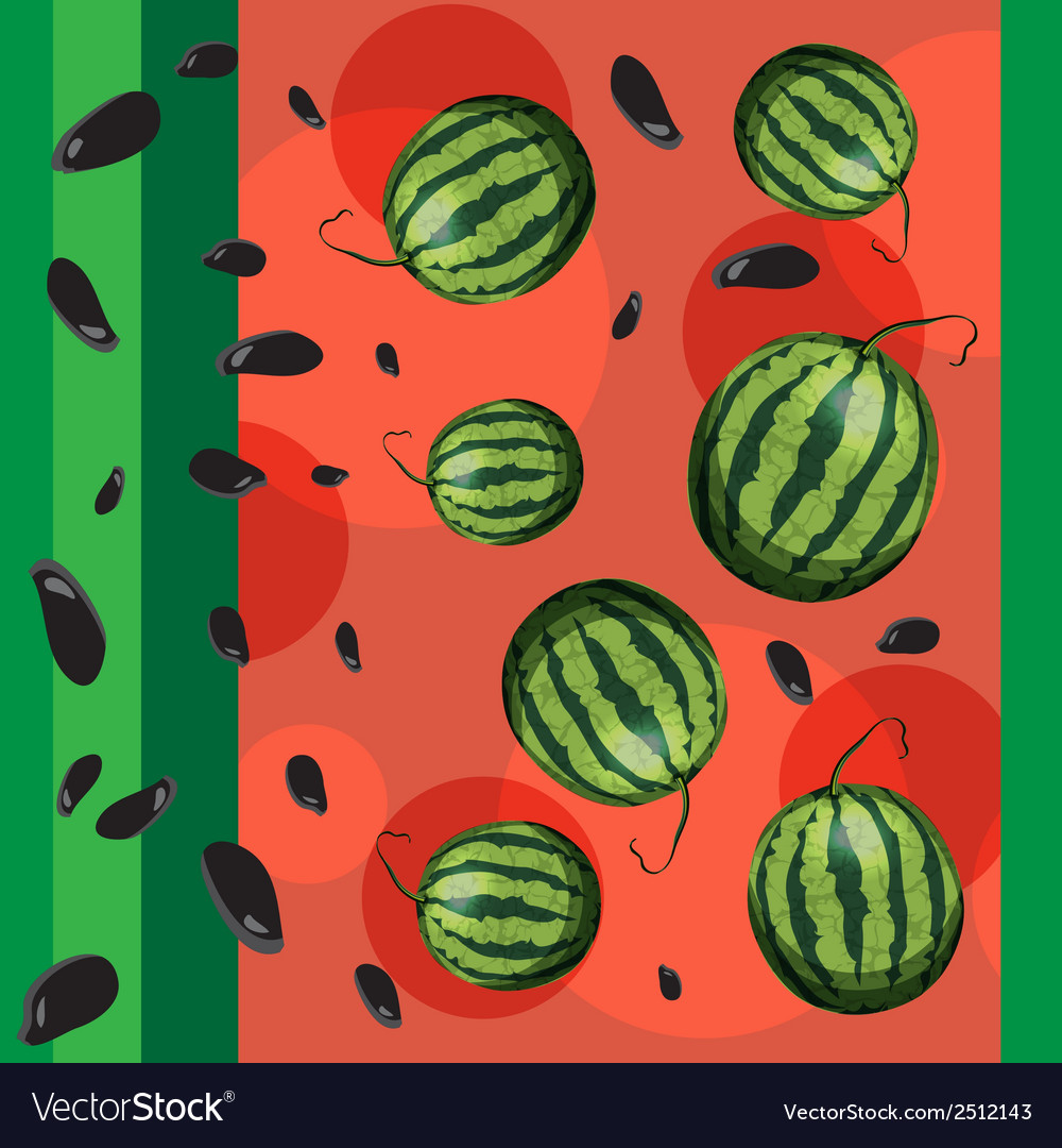 Watermelon and seeds from watermelon vector | Price: 1 Credit (USD $1)