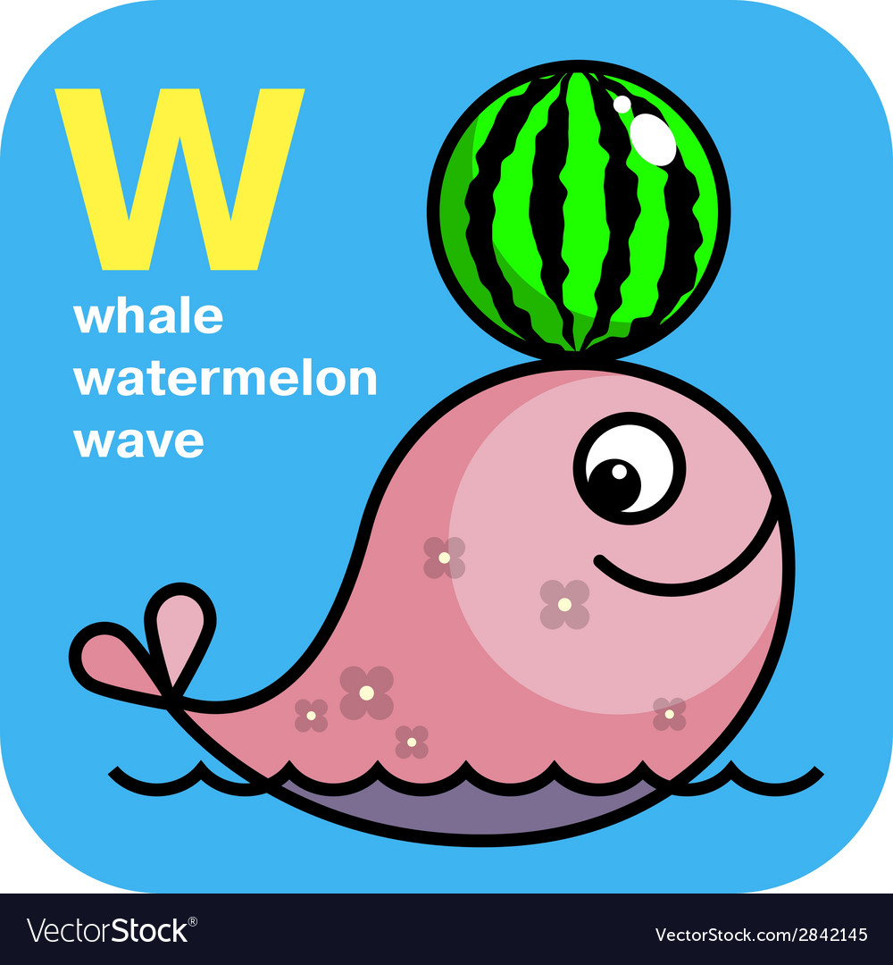 Abc whale watermelon wave vector | Price: 1 Credit (USD $1)