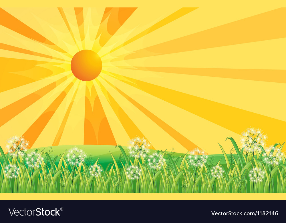 Sunshine field vector | Price: 1 Credit (USD $1)
