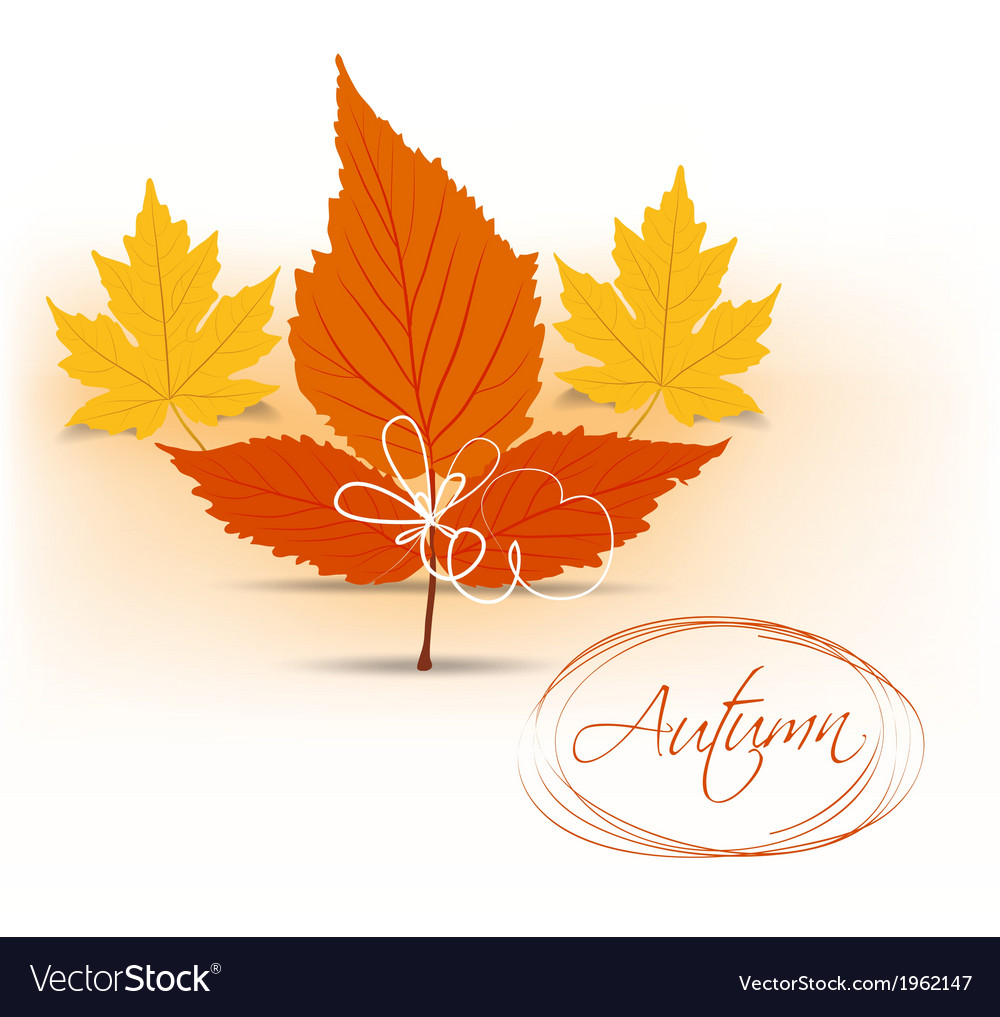 Autumn leaves background 18 vector | Price: 1 Credit (USD $1)
