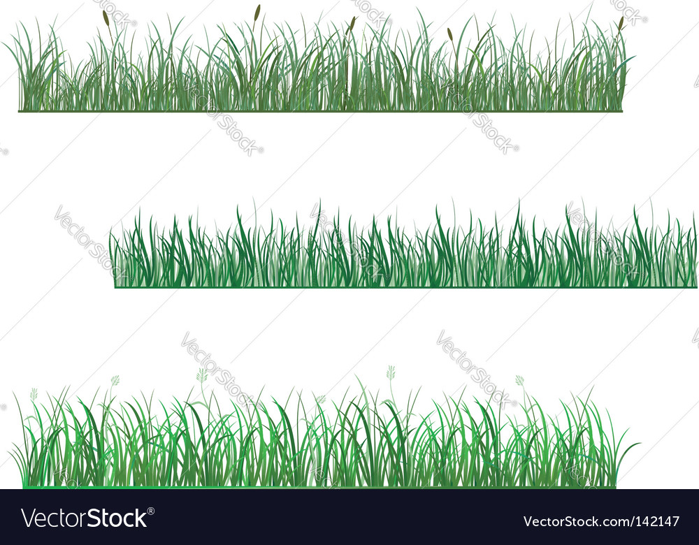 Grass patterns vector | Price: 1 Credit (USD $1)